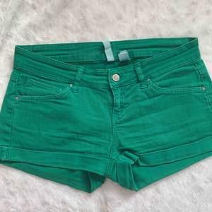 Mango shorts st.38