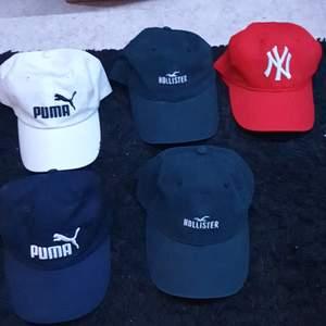 Kepsar olika märken, one size, paketpris 100 kr eller kom med bud, går köpa styckvis