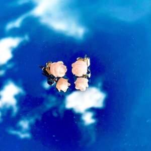 Otroligt gulliga rosa örhängen med rosor på. Kan skicka bättre bild i DM. Köpta på second hand men desinfekteras innan frakt, frakt tillkommer 11kr. Passar perfekt nu till sommaren!