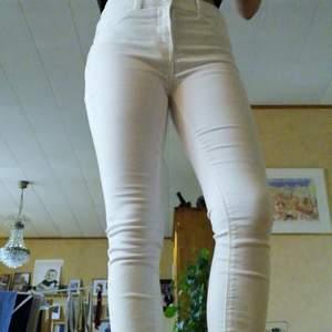 Säljer ett par vita jeans som är köpta för runt 2 år sedan men bara blivit använda ca 1 gång. Säljer då de inte riktigt är i min storlek men annars inga fel på dem! Storlek w26. Osäker på längden men jag är omkring 165 cm och de slutar perfekt där fötterna börjar! Pris är utan frakt. Byte är möjligt!