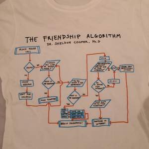En t-shirt jag tror är köpt på Comic con med the big bang theory tryck på. I ganska bra skick, inte nopprig och bara lite använd osv. Möts i Stockholm, helst på Södermalm ❤️ paketpris kan fixas vid köp av flera plagg.