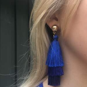 Marin blåa örhängen