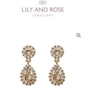 sparsamt använda Lily and rose örhängen.                 Nypris: 499kr