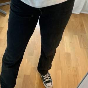 Jättefina svarta byxor från Weekday i modellen Voyage. Storlek W25 L30, (ungefär som S)! Knappast använda och byxorna är i mycket bra skick. Köpta för 500kr och jag säljer för 120kr + frakt (62kr). Vid intresse eller frågor skriv till mig privat!