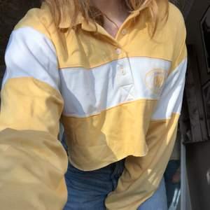 Jättesnygg croppad tröja från Bikbok, använd ett par gånger men är i väldigt bra skick☺️ storlek L men sitter snyggt oversized på mindre storlekar också (jag har vanligtvis s)