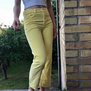 Samma byxor som jag postat tidigare, med min kompis på bilden som är 163 cm
