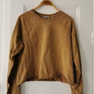 Sweatshirt från Cos i en varm, beige nyans. Croppad men inte jättekort, kan klippas av om man vill ha den kortare.