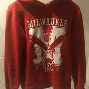 Skit cool sweatshirt som jag har ärvt av min storebror, så det går nog inte att få tag på tröjan idag. Även fast den är ganska gammal så har den inga slitningar eller hål! Kontakta för mer info❤️