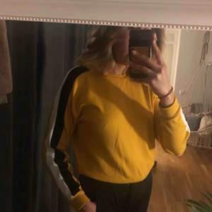 Super fin gul tröja
