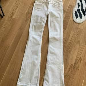 White bootcut zara Jeans size 36