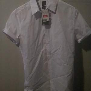 Summer shirt with short sleeves
