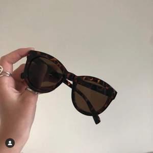 Snygga solglasögon med leopardmönster