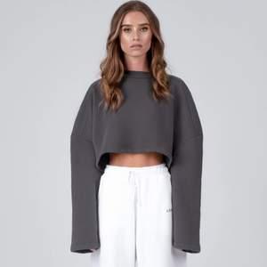 Säljer den här sweatshirten från Linn Ahlborgs märke lxa då den tyvärr är lite liten för mig. Helt oanvänd med lappen kvar. Nypris 449kr, men är helt slutsåld överallt!