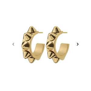 Populära nit örhängen från Edblad💕 säljer pga har likadana i silver💕 köp direkt för 250kr💕💕