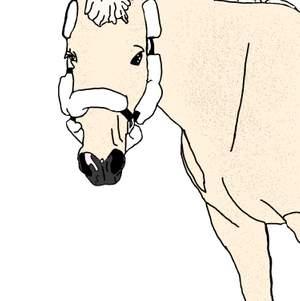 Hej efter mycket fram och tillbaka har jag bestämt mig för att börja sälja digitala bilder som jag har/ska måla själv💞 kom privat om du vill ha mer information och eller är intresserad💞pris: häst (10kr) annat djur (5kr) häst och människa/ människor (15kr)