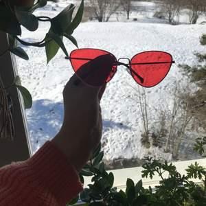 Ascoola röda tintade solglasögon.  Köparen betalar frakten.