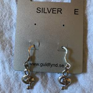 Örhänge i silver