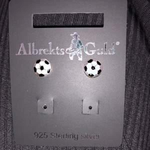 Helt oanvända örhängen i äkta silver. Köpt på Albrekts Guld. Frakt 12 kr