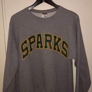 Vintage tröja storlek S. MÄRKE JERZEES väldigt kännt bland vintage kläder. Bra skick inga hål eller fläckar. Skriv för flera bilder vid intreSe av tröjan.