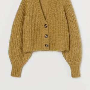 Stickad kofta i ull från alpacka. Inköpt på Hmtrend. Färgen är gammaldags gröngul.