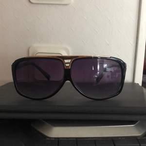 Louis Vuitton glasögon som nya