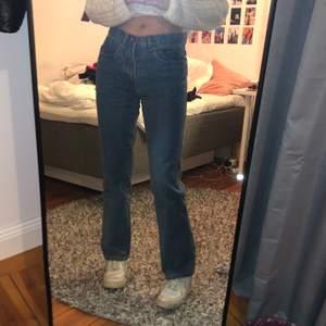 Skitsnygga raka jeans från humana secondhand. Använda max 2 gånger! Storkelen står inte men skulle gissa på 36/38. Jag är 170 cm lång🧚🏼♀️