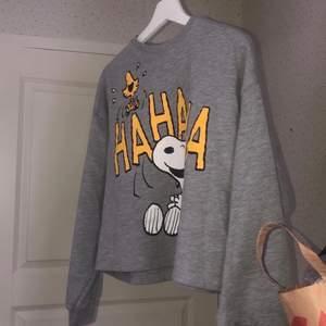 Jättefin sweatshirt i nyskick ifrån pull&bear, säljer då den är för kort för min smak. Sitter nog snyggast på S💓kan passa M, men sitter tajtare. Nypriset var 300kr, mitt pris 100kr. Använd 2 gånger.