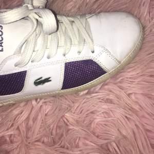 Lacoste skor storlek 37, har köpt dom begagnade men använt dom ungefär 2 gånger själv då de är lite små för mig!!  100 plus frakt!!!