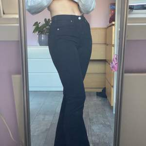 """Svarta bootcut jeans från dr. Denim i modellen """"Macy"""". Endast prövade!"""