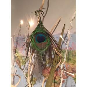 Stort statement-örhänge gjort av en påfågelfjäder Inköpt på Gotland Plastplupp medföljer (se bild 3) OBS jag säljer alltså endast ett örhänge, mitt tips är att kombinera detta med en diamant eller ett pärlörhänge