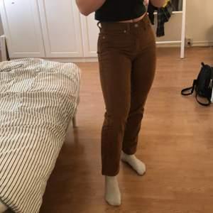 Säljer mina Wedgie Straight byxor i brun Manchester. Jag har använt dom ett fåtal gånger men inte längre vilket är anledningen till varför jag säljer dom. De är mycket korta i storleken och passar perfekt för mig som är 154cm. De har en lätt stretch och sitter bra! Köparen står för frakten. ❤️