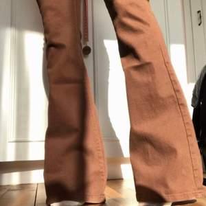 mina supersnygga och populära jeans i storlek 36/S 🤩 dem är såklart aldrig använda 🤎 dem är väldigt sköna och färgen är så snygg! ingen budgivning, först till kvarn 🦋 skickas med spårbar frakt 🌞