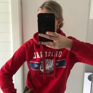 Röd Hoodie från gina tricot ✨hyvsat bra skick!
