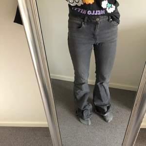 Säljer mina gråa mango flare jeans i storlek 36. Är väldigt långa på mig (165cm) och har därför slitits längst ner (se bild 3). Obs. kmr tvätta jeansen innan köp (lite smutsiga längs ner). Priset är exklusive frakt. Hör av er om ni har några frågor🥰💞
