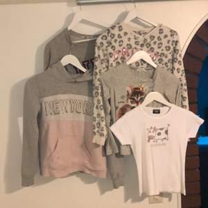 Hoodies, sweatshirt och en t-shirt. Allt är i storlek 158/164, förutom t-shirten som är 140 och tröjan med katten som är 134/140. Skriv för pris eller mer information om enskilda plagg! ❌leopardtröjan är såld❌