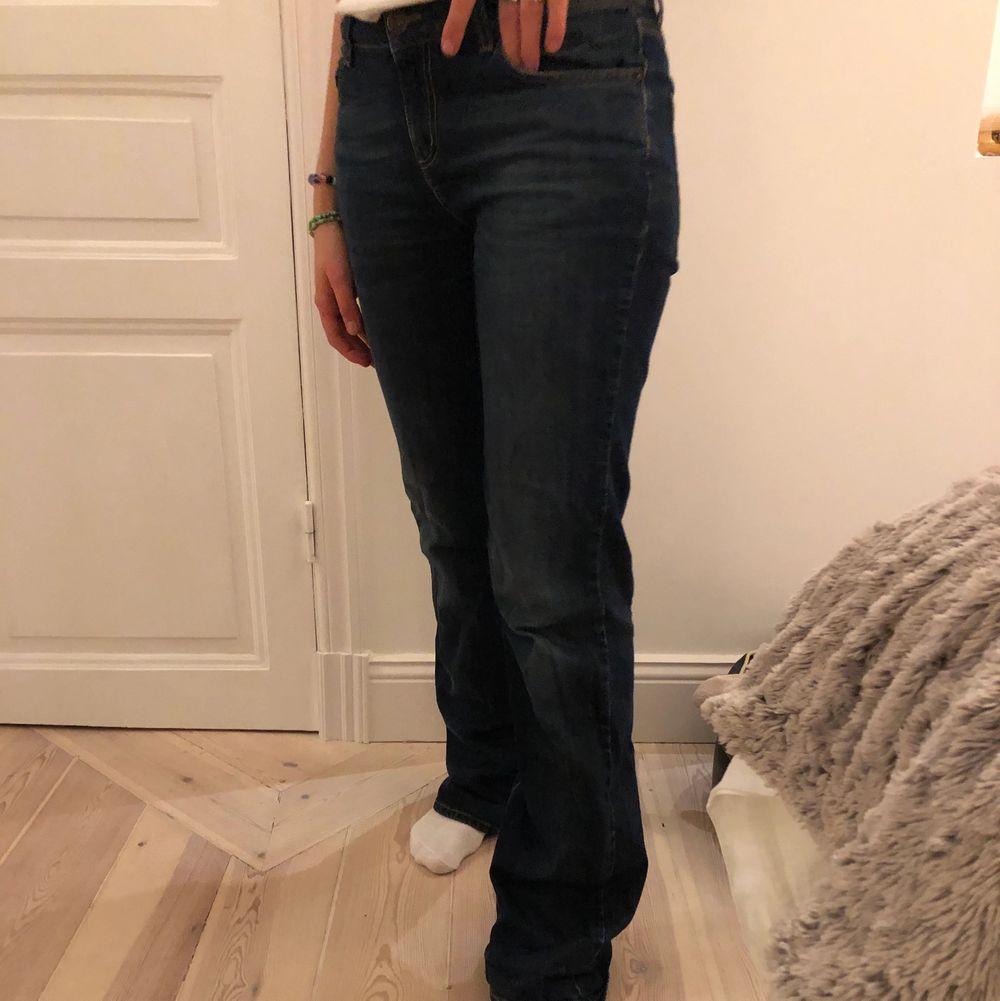 Riktigt snygga raka möjblåjeans från Lexington. Jeans & Byxor.