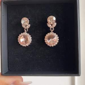 Ett par fina rosa silvriga örhängen från Lily and rose. Nypris 349kr