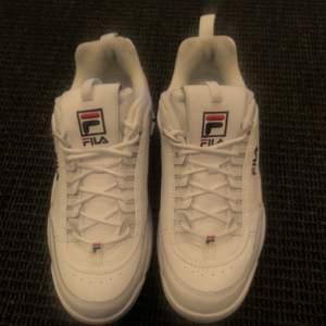 Säljer ett par sparsamt använda chunky Fila skor. Väldigt fint skick!