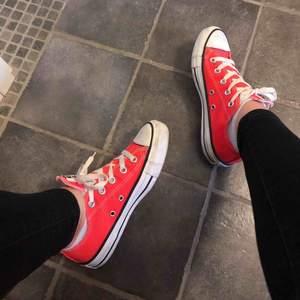 As coola äkta Converse i neon orange färg🤩 använda väldigt lite så är i fint skick👍🏻 storlek 36 och är normal i storleken😇passar perfekt nu till våren eller till neon fest🥳