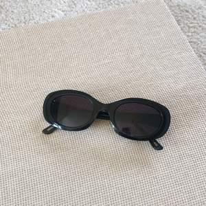 Solglasögon i modellen Capri från Corlin Eyewear. Helt nya. Nypris 799 kr.