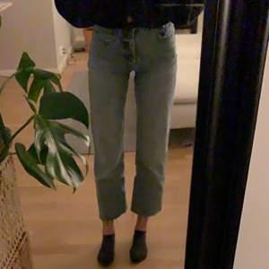 Säljer mina fina ZARA jeans i st 32 som tyvär blivit för korta för mig som är runt 1,65. De ska vara korta men jag har väldigt långa ben så därför vill jag sälja de. Använda 10-15 gånger men som nya (inga hål eller liknande)