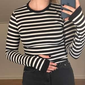 långärmad randig tröja med tumhål från chiquelle. har vikt upp den på bilden! frakt tillkommer