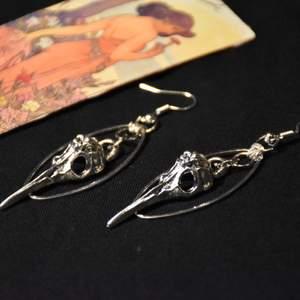 Silvriga örhängen med fågelskallar, nickelfria krokar :)