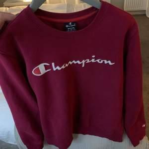 Skit snygg oversize college tröja från Champion i storlek M, väldigt bra skick. Om fler är intresserade så buda i kommentarerna!