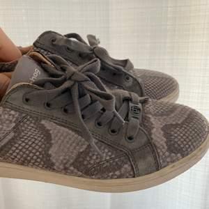 Sneaker från Philip Hog, bra skick men lite använda! Storlek 37!