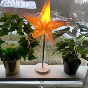 Konstväxter 50kr st Man får kruka till☺️ (dom på bilden) Spårbar frakt⚡️