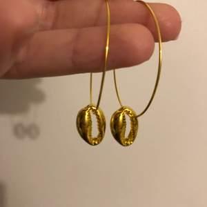 Guld örhängen med en snäcka! Ny skick. Aldrig använd.