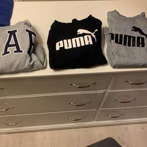 Säljer 2 stycken puma tröjor, den gråa är storlek M och den svarta är storlek s. De är vanliga sweatshirt utan luva. Gap är en hoodie i storlek M. Varje kostar 170 kr plus frakt. Kör alla 3 för 400kr