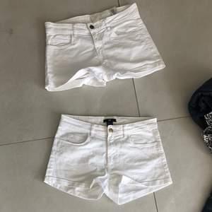 Vita basic shorts från H&M, båda är oanvända så fortfarande i fint och använt skick. Storlek 34 så passar xxs/xs. Kan erbjuda båda två för 50 kronor💗