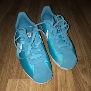 Knappt använda, Nike Cortez Nylon Blue! Storlek 40   Finns inte att köpa längre i butik